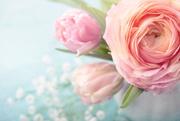Цветы (flowers) MENSAY_t