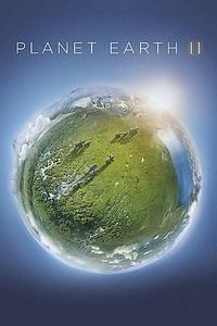 Planet Earth II  (2016) UHD Bluray Untouched 2160p DTS-HD MA ITA ENG SUB ITA ENG