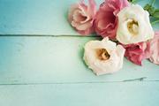Цветы (flowers) MENSD3_t